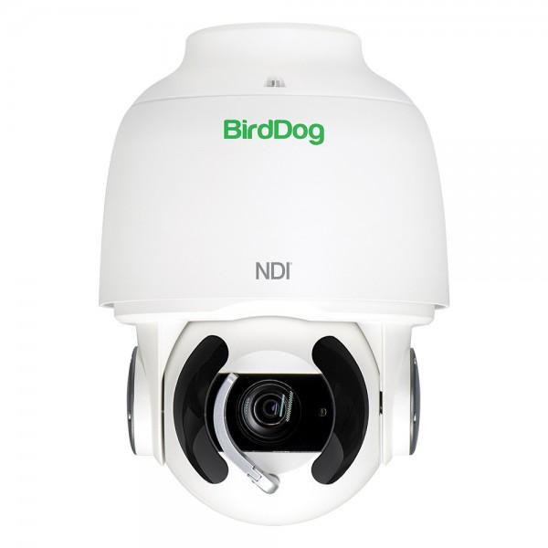BirdDog - Eyes A200 PTZ Kamera - IP67 - weiß BirdDog